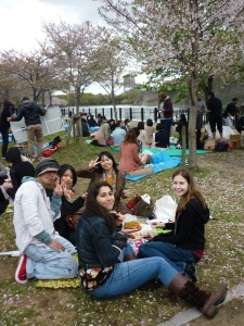 A picnic is so much more beautiful under the cherry blossoms