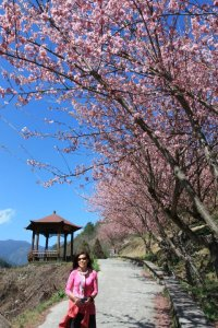 My host mom with the cherry trees and beautiful mountain views