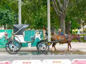 There are horse-drawn carriages outside of the restaurant where we met!