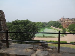 Combination of algae and garbage in the Hauz Khas reservoir in Delhi