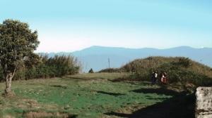 Crisp Darjeeling air