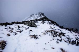 Near the top of Snow Mountain, my first climb in Taiwan