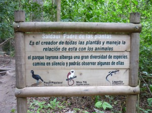 Tayrona is home to a number of animal species!