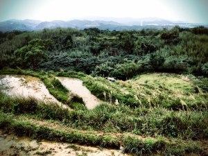 Terraced rice paddies and tea farming in the mountainous areas near Yilan County in Taiwan